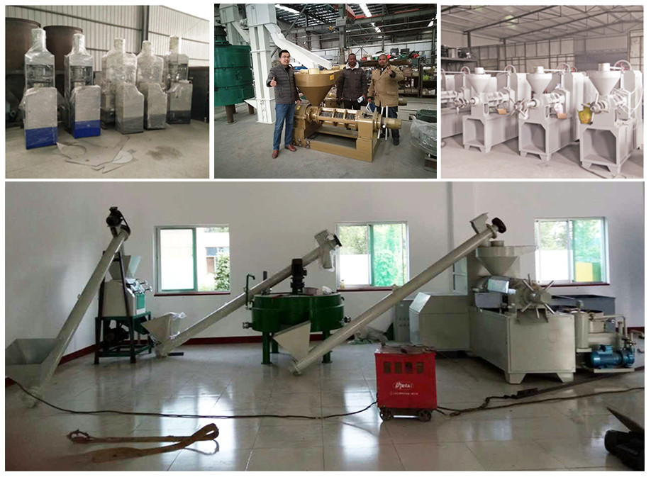 Best price peanut/soyabean/sunflower oil extraction machine