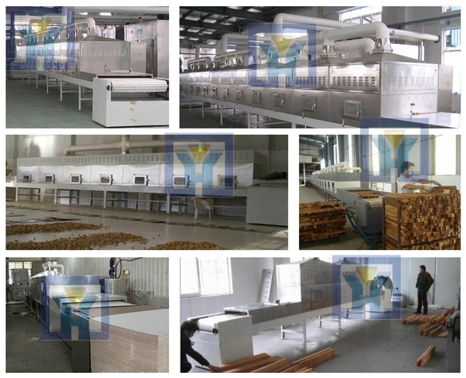 The rabbit fish microwave drying sterilization equipment