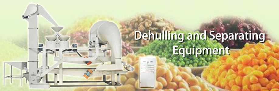 6YL Series rice bran oil making machine