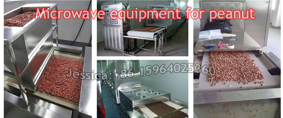 Continuous conveyor belt microwave walnuts sterilization equipment