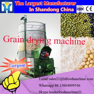 Chestnut microwave drying sterilization equipment