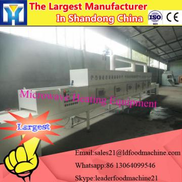 Spring Onions microwave drying equipment