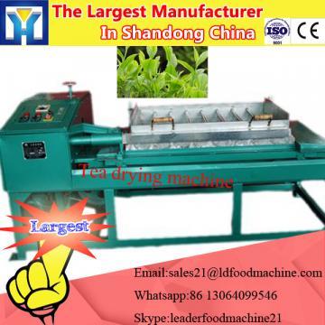 Strawberry pulp processing machine