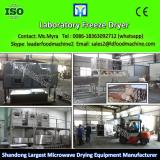 Biobase Lab Vacuum Freeze Dryers/freeze dryer for lab