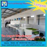 Balance Kiln dryer Microwave Vacuum Drying Equipment
