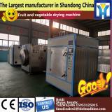 Easy control watermelon drying machine/fruit processing machine/dryer