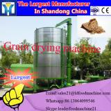 Tunnel grain sterilizer