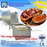 High efficiency continuous belt type millet sterilizer