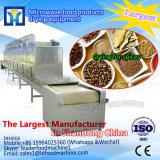 Tunnel continuous working microwave drying equipment for fruit