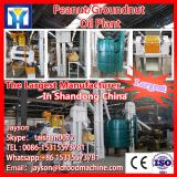 20TPH animal fat palm fruit oil produce equipment long using life