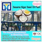 big capacity fruit vegetable slicing and dicing machine