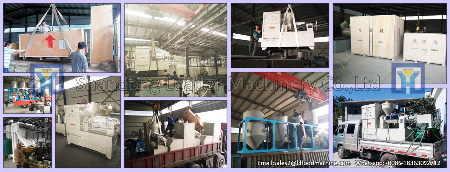 New design heat pump fruit and nuts drying Machine Fruit dryer