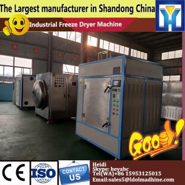 Remarkable efficiency vacuum mini freeze drying machine for hot sale