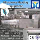 Microwave tunnel type microwave drying and sterilization equipment for vegetable and fruit
