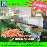 Continuous microwave for ginkgo leaf dryer/ginkgo leaf drying machine