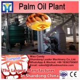 LD HUATA automatic coconut oil press machine